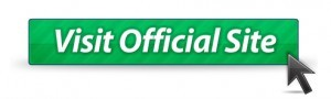 visit-official-website-300x90